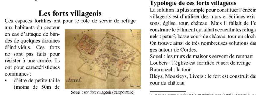 Bulletin N° 9 - Les forts villageois